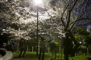 フォトスクール 福岡 写真教室 デジカメ講座 出張撮影 イベント撮影 0358
