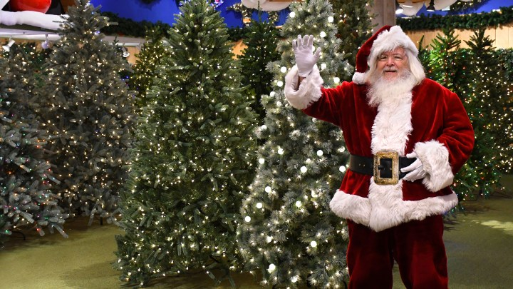 Santa Claus standing among lighted Christmas trees