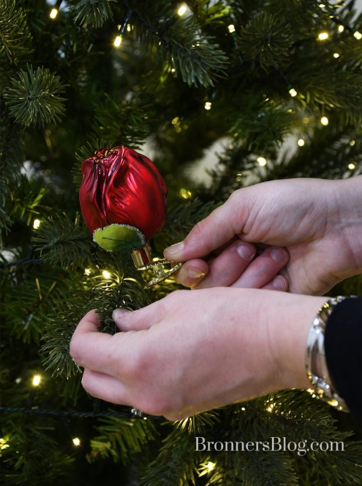 Woman's hands putting the red glass tulip clip ornament on the branch of a lighted Christmas tree.