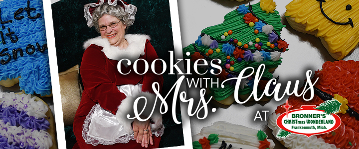 Christmas Cookies from Bronner's