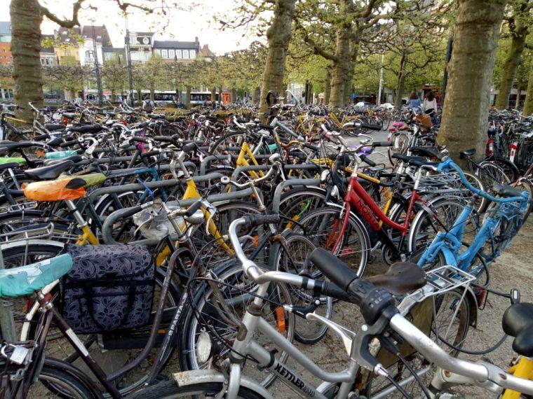 St Peter's Station bike park