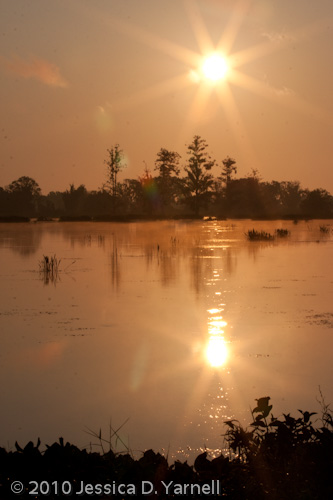 Sunrise over the marsh