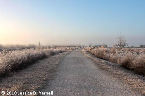 Frosty Heron Hideout trail