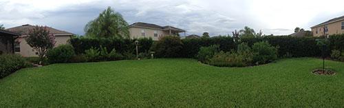 2014 Backyard Panorama - Left