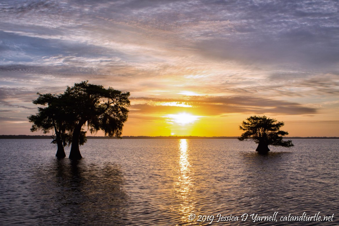 Sunrise over Blue Cypress Lake