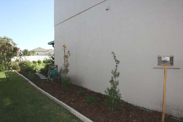 Side yard with no grass!