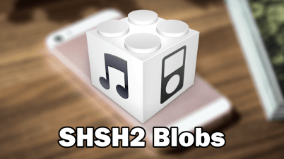 shsh2 Blobs saving
