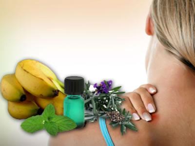 Zaštitite se na prirodan način – 3 mirisna sredstva protiv dosadnih komaraca