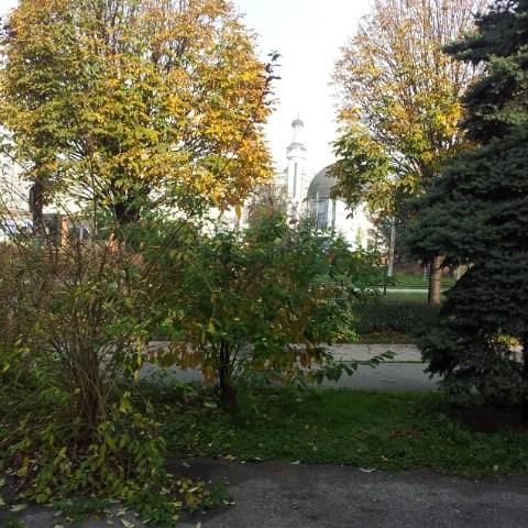 Dolaskom jeseni, lišće mijenja boje…