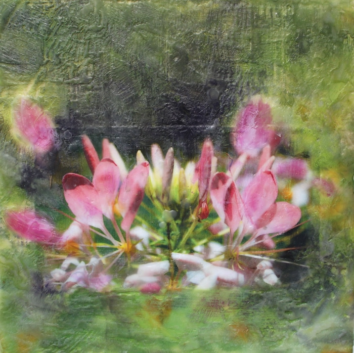 photo encaustic painting pink flowers green background doris lovadina-lee toronto ontario canada