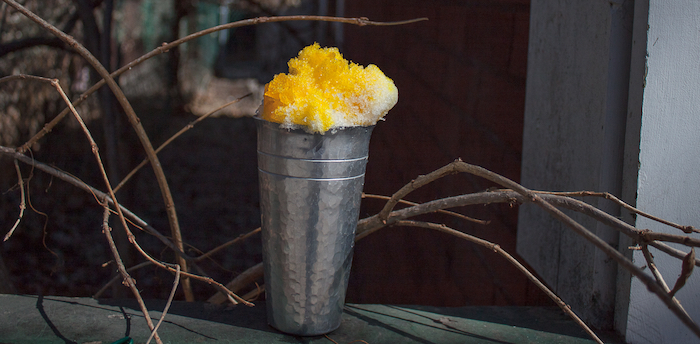 yellow dye in pewter cup on fence with branches toronto ontario canada photo shoot