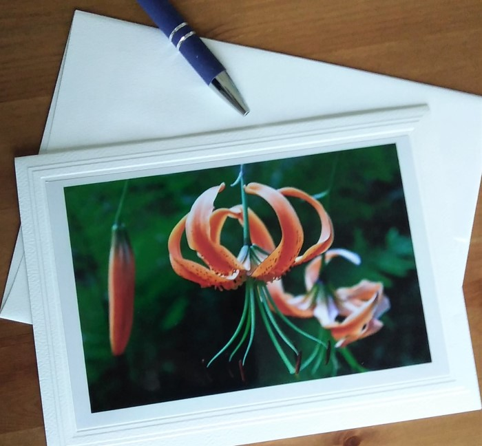 photo of orange lily by doris lovadina-lee on blank greeting card