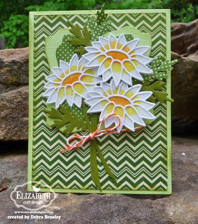ECD daisy front 1a P1060540