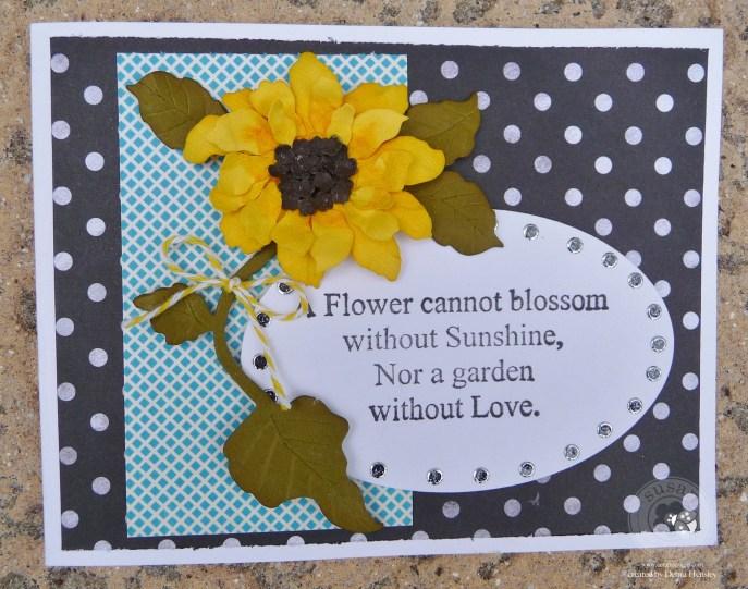 SG Feb bp Sunflower 1a P1070647