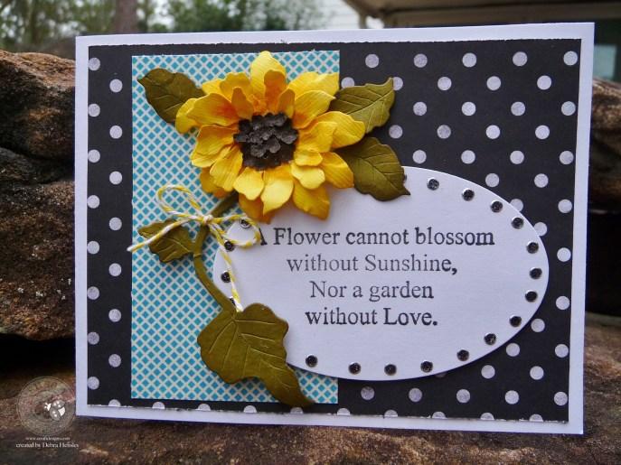 SG Feb bp Sunflower 2a P1070639