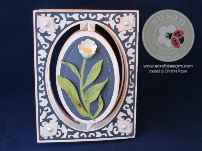 Tulip Delight 4282015