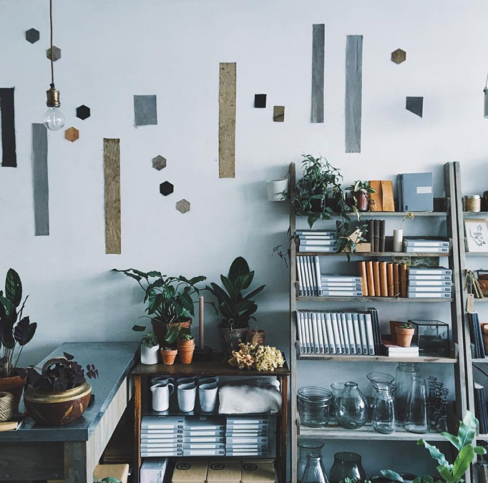 Plant Filled Shop Shelves | Gather Goods Co