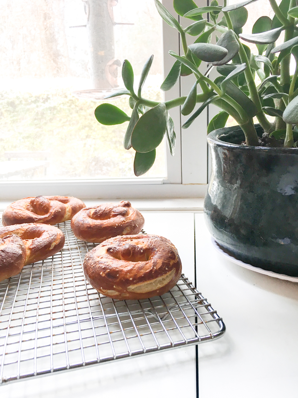 Homemade Soft Pretzel Recipe | Gather Goods Co