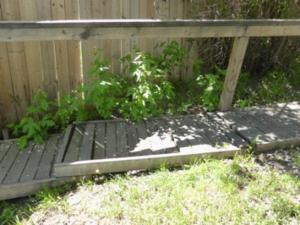 Walkway in Margi's backyard