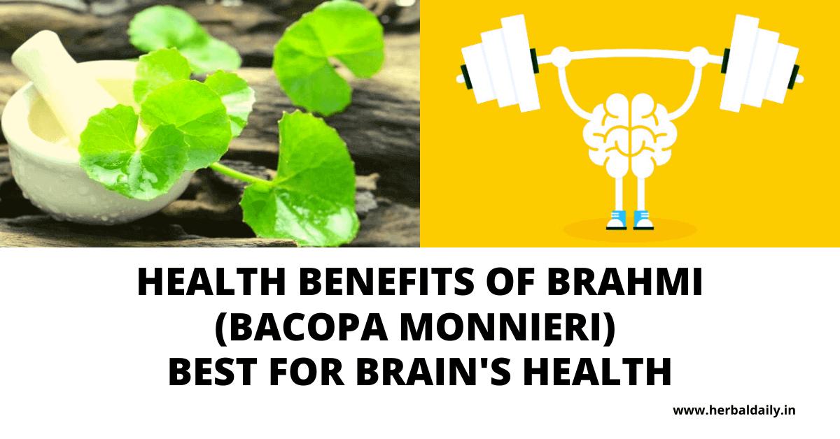 Health benefits of brahmi - BACOPA MONNIERI प्राकृतिक हृदय टॉनिक