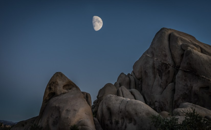 An Evening at Joshua Tree National Park