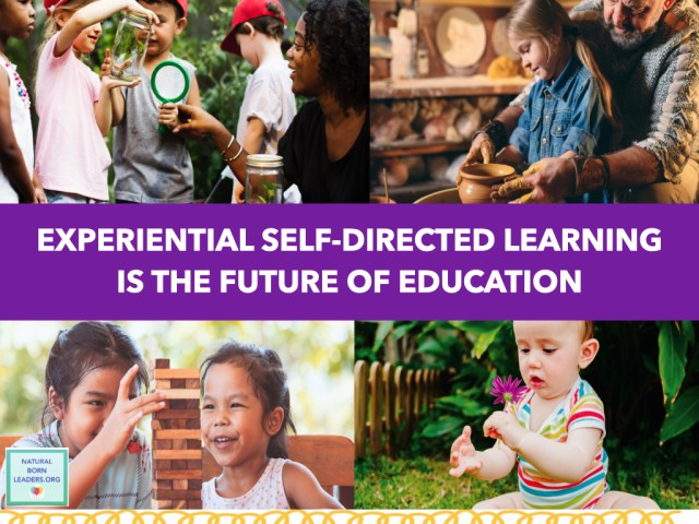 self directed learning home education