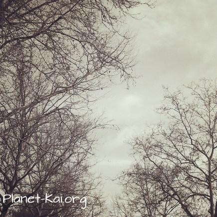 Foto 19.03.14 10 27 41