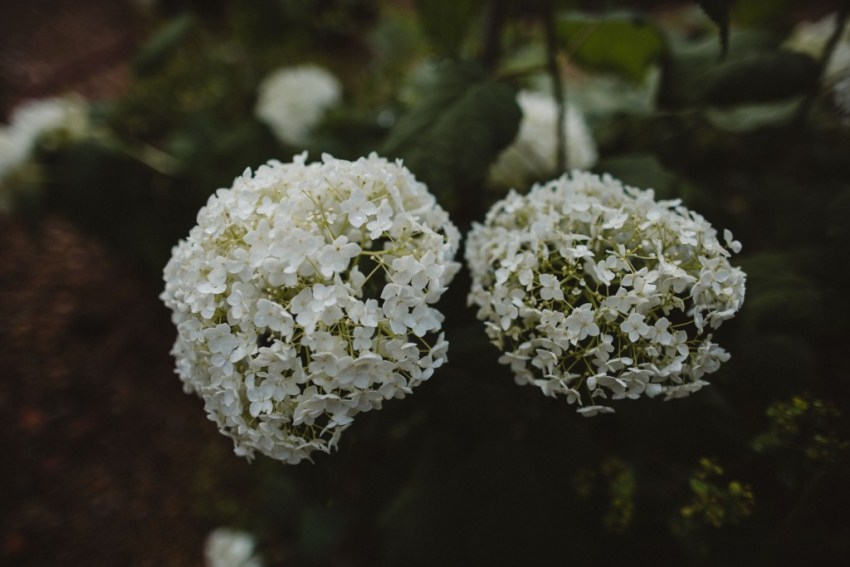 Rebecca Goddard Fine Art Wedding Photography-6