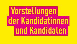 FDP Europawahlen 2019