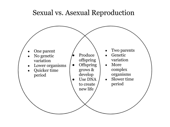 asexual vs sexual reproduction venn diagram