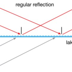Light Ray Diagram Worksheets Vw Golf Mk4 Speaker Wiring Reflections On From The Snow To Classroom In This Unit Of We Did A Lab Where Looked At Way Reflects Had Draw Diagrams And Figure Out How They