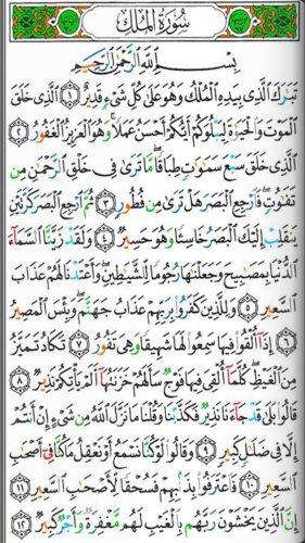 تفسير القرآن الكريم كاملآ لابن كثير