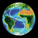 Spostamenti della Sterna Artica durante la migrazione (credit: BAS)