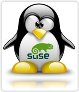 openSUSE Logo on Tux