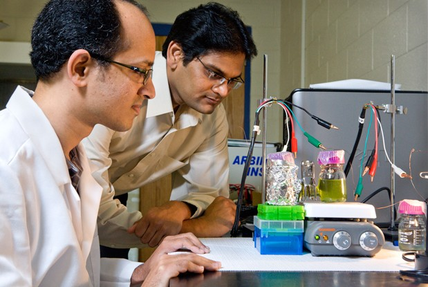 University of Georgia interrupts plant photosynthesis to make truly green energy