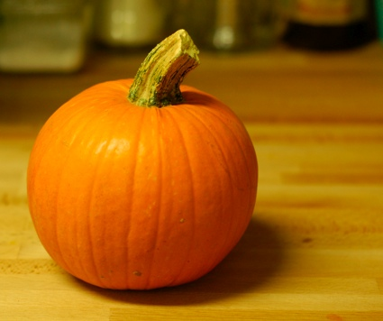 a pumpkin grown for pies sitting on my kitchen counter