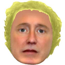 hampshire police suspect rendering