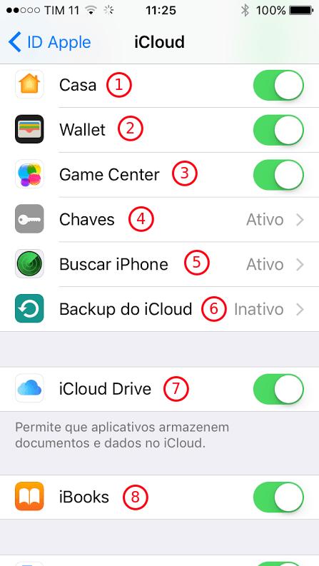 Opções do iCloud - 2