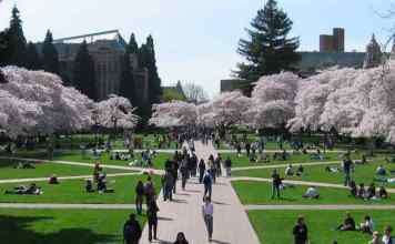 Bolsas para mestrado em Direito | University of Washington, Barer Institute | Foto: Punctured Bicycle, via Wikimedia Commons