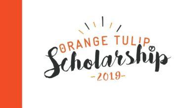 Bolsas para estudar na Holanda - Orange Tulip Scholarships | Crédito: Divulgação