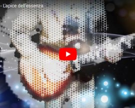 Txd Smook - L'apice dell'essenza - copertina Video