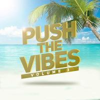 Push The Vibes, volume 3 - compilation