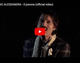 Alessio Alessandra, Il pavone - Video