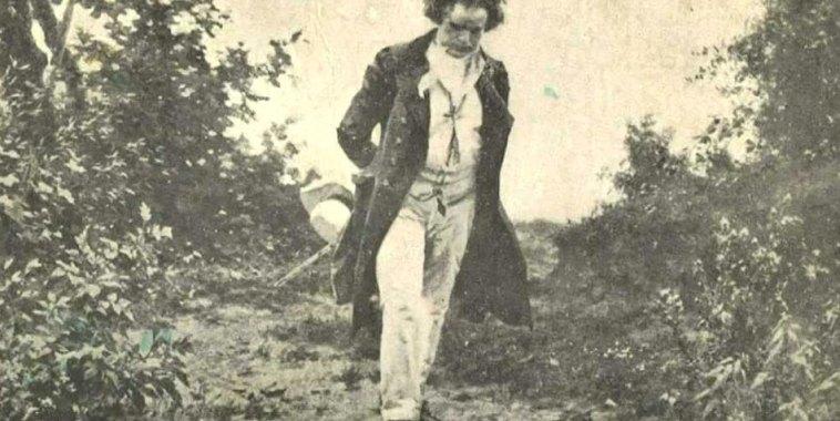 Ritratto di Ludwig Van Beethoven passeggia mentre in un bosco