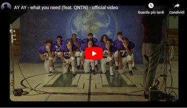 Copertina del video di AY AY: What you need (feat. QNTN)