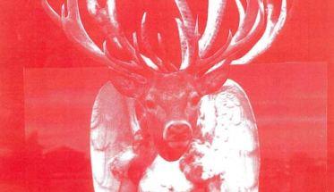 Copertina dell'EP dei Bunnyblack