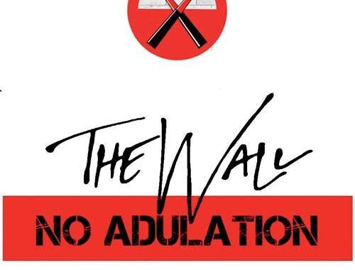 copertina del libro di The wall di Matteo Palombi