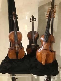 Violini antichi della collezione Vazquez
