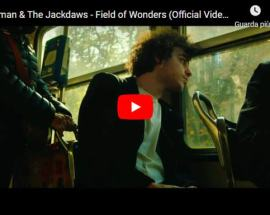 copertina del video Strawman & The Jackdaws: Field of Wonders