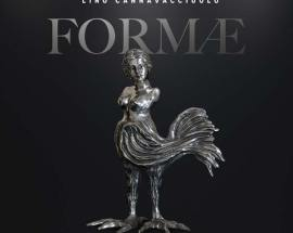 copertina con fondo nero del disco di Lino Cannavacciulo FORMAE